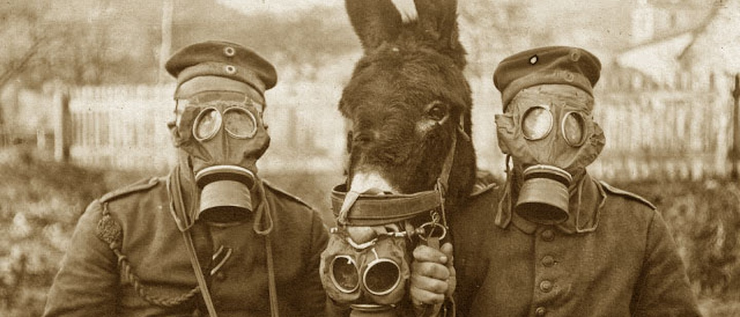 Soldiers and mule wearing gas masks copie.jpg